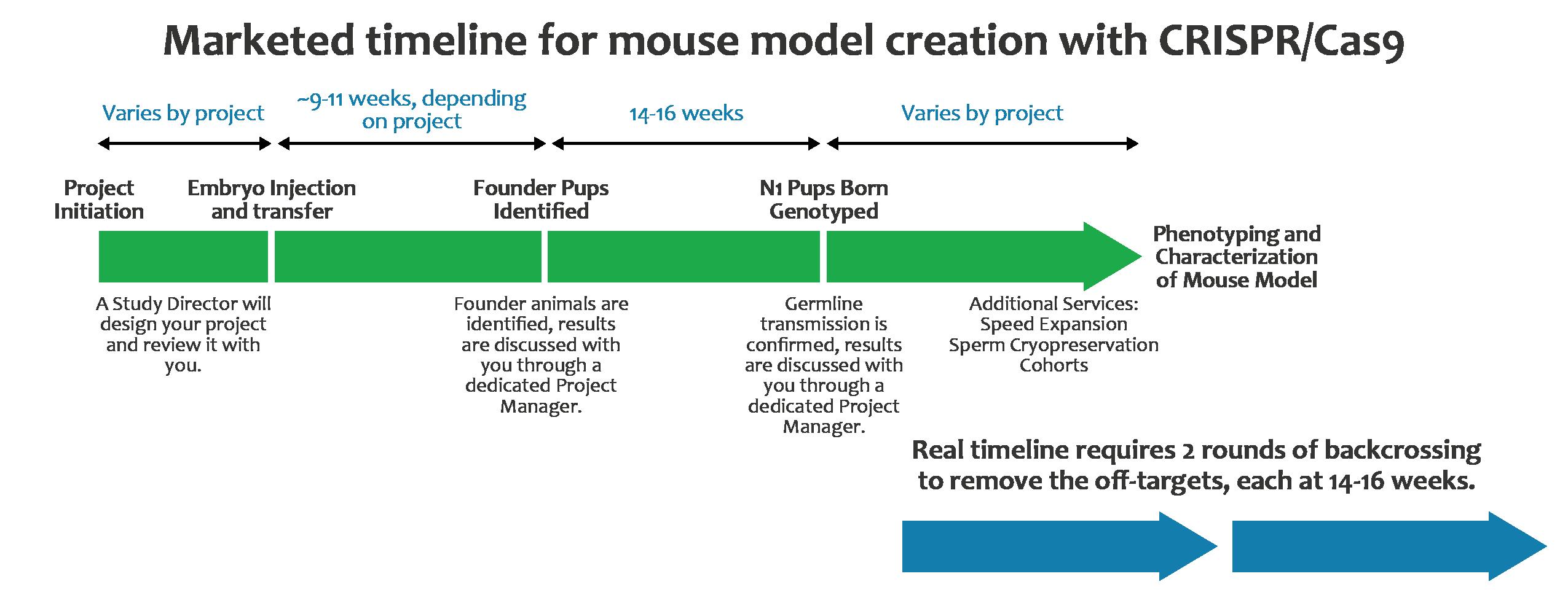 Hera BioLabs - Animal Model Creation